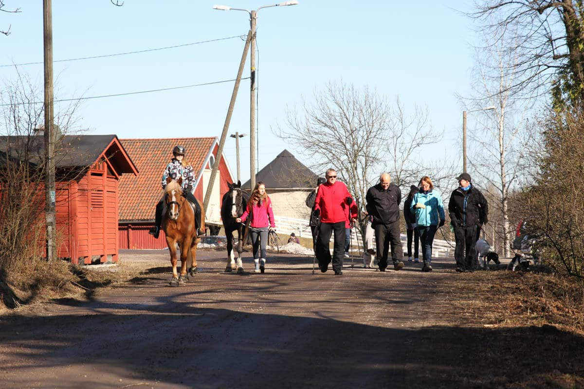 Ihmisiä ja hevosia kävelyllä Tuomarinkylässä.
