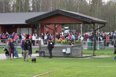 Pelastetaan Tuomarinkylän koirakeskus!