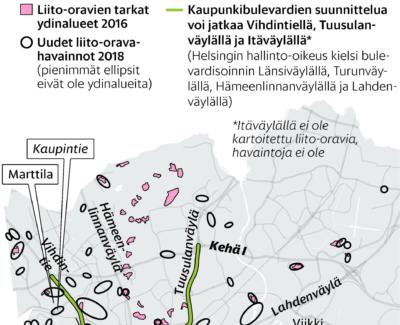 HS: Liito-oravat uhkaavat kaupunkibulevardien toteutumista – esiintymiä myös Tuomarinkylässä