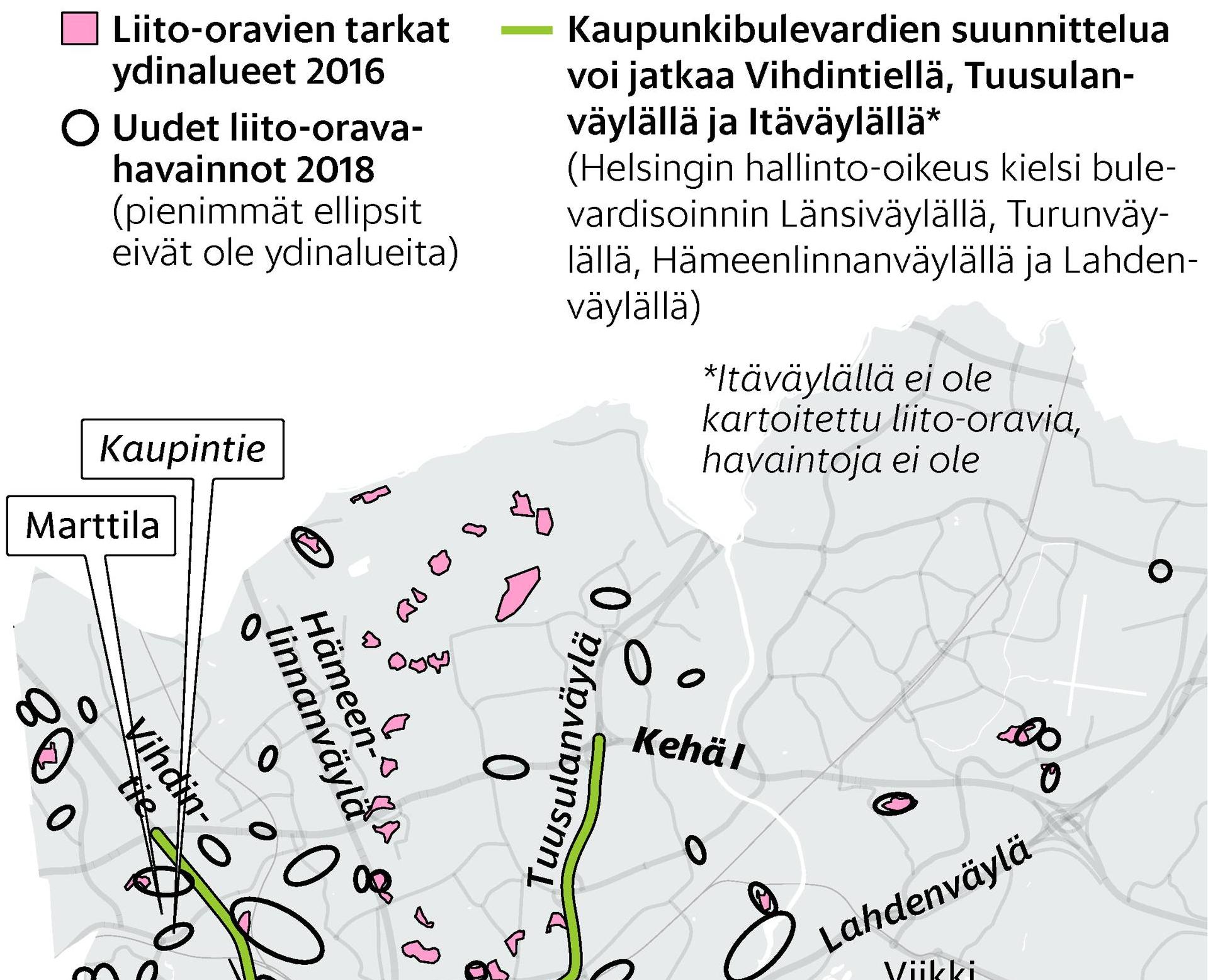 Liito-oravat_2018_Crop