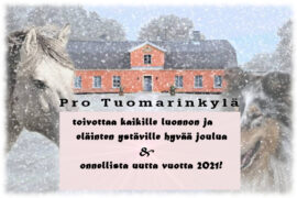 Pro Tuomarinkylä, joulu 2020